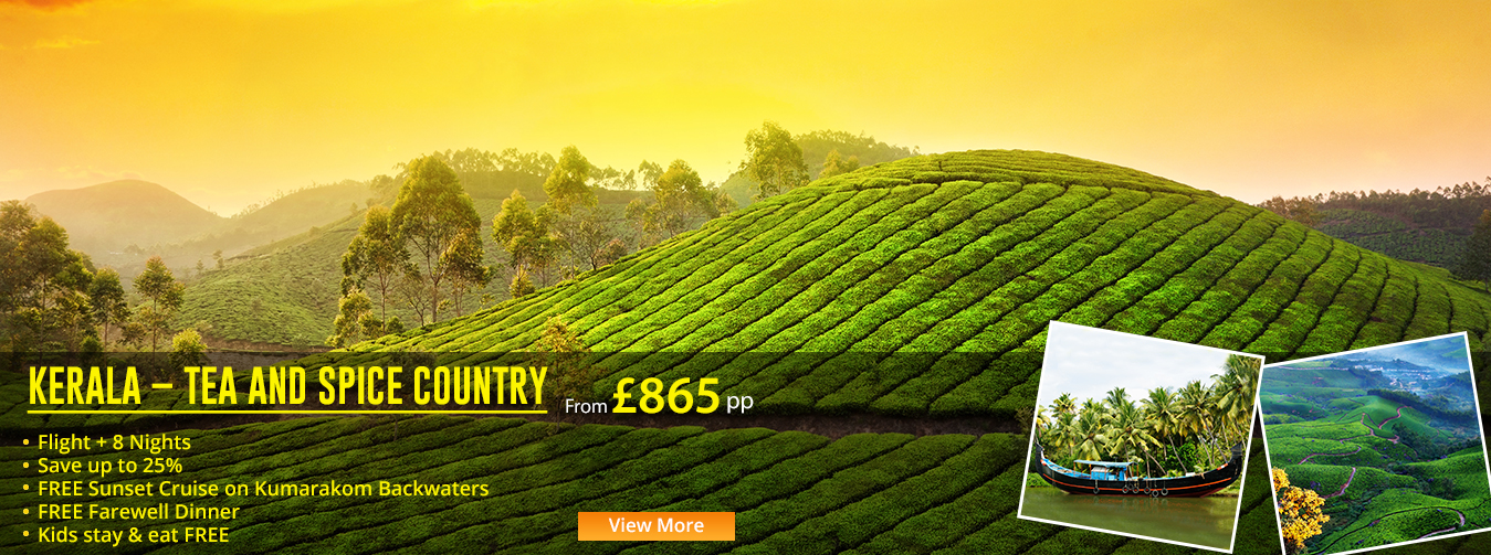 KERALA-TEA-AND-SPICE-COUNTRY Offer Banner