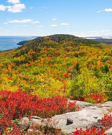Acadia-National-Park-01