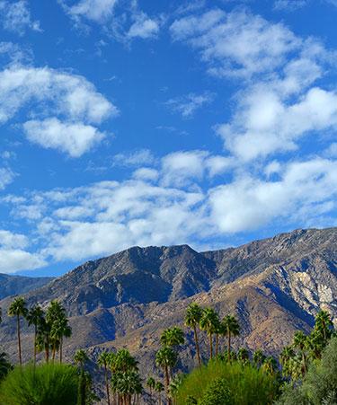 Palm-Springs-02