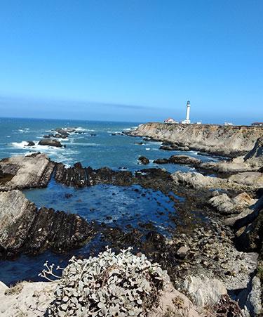 Rugged-Coastline