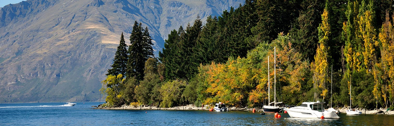 Flights To Queenstown Compare Price On Tickets To Queenstown