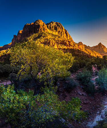 Zion-National-Park-01